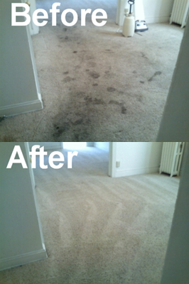 American Steam-A-Way Carpet Cleaning Before-After