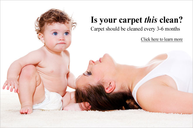 Carpet Cleaning Services | American Steam-A-Way | Nederland, Port Neches, Port Arthur, Beaumont, Texas