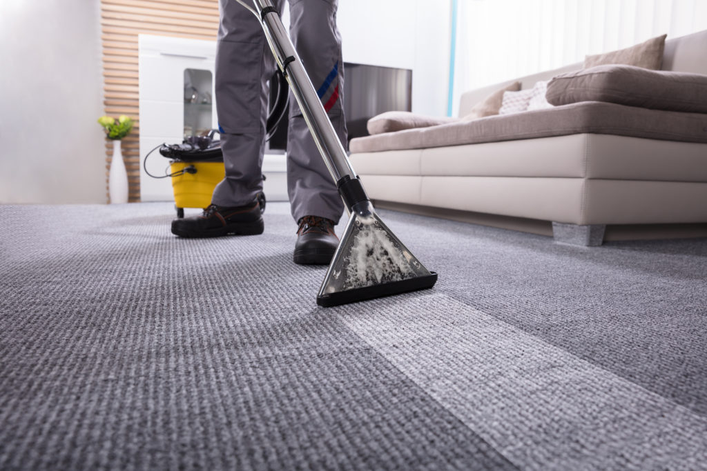 What To Look For In Carpet Cleaning Products – Beeah-UAE